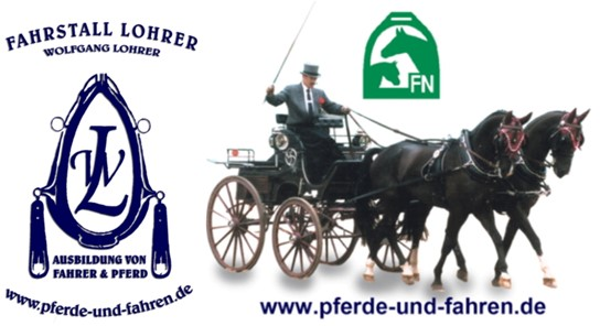 Pferde-und-Fahren